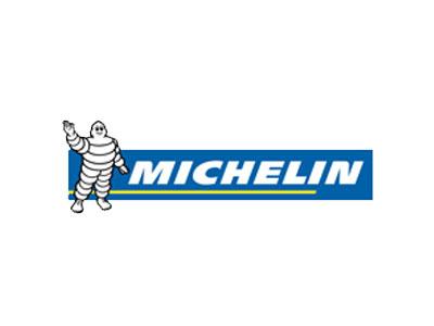 Bush road tyres brands michelin